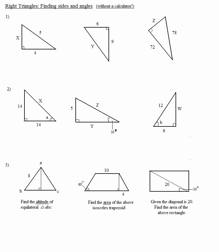 30 60 90 Triangles Worksheet Inspirational In Plete and Dominance Worksheet Answers