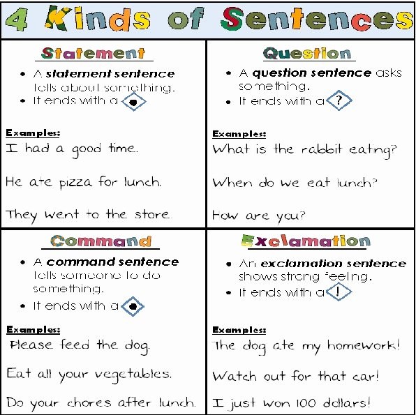 4 Types Of Sentences Worksheet Best Of Best 25 Kinds Of Sentences Ideas On Pinterest
