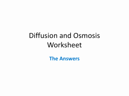7.3 Cell Transport Worksheet Answers Luxury Diffusion and Osmosis Worksheet