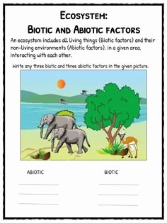 Abiotic and Biotic Factors Worksheet Best Of Biotic or Abiotic sort Cut and Paste Living or Nonliving