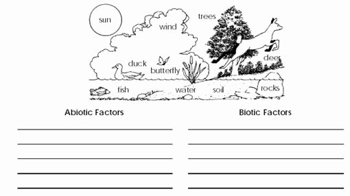 Abiotic and Biotic Factors Worksheet Best Of Ecology Biotic and Abiotic Factors Worksheet Google