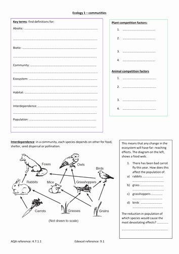 Abiotic and Biotic Factors Worksheet Best Of Lawrencel S Shop Teaching Resources Tes