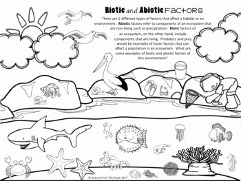 Abiotic Vs.biotic Factors Worksheet Answers New Biotic and Abiotic Worksheet Wiildcreative