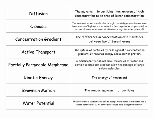 Active and Passive Transport Worksheet Beautiful Diffusion Osmosis and Active Transport by Freddyhillman
