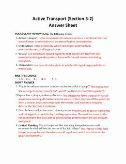 Active and Passive Transport Worksheet New Supplemental File S4 Acting Transport Pre