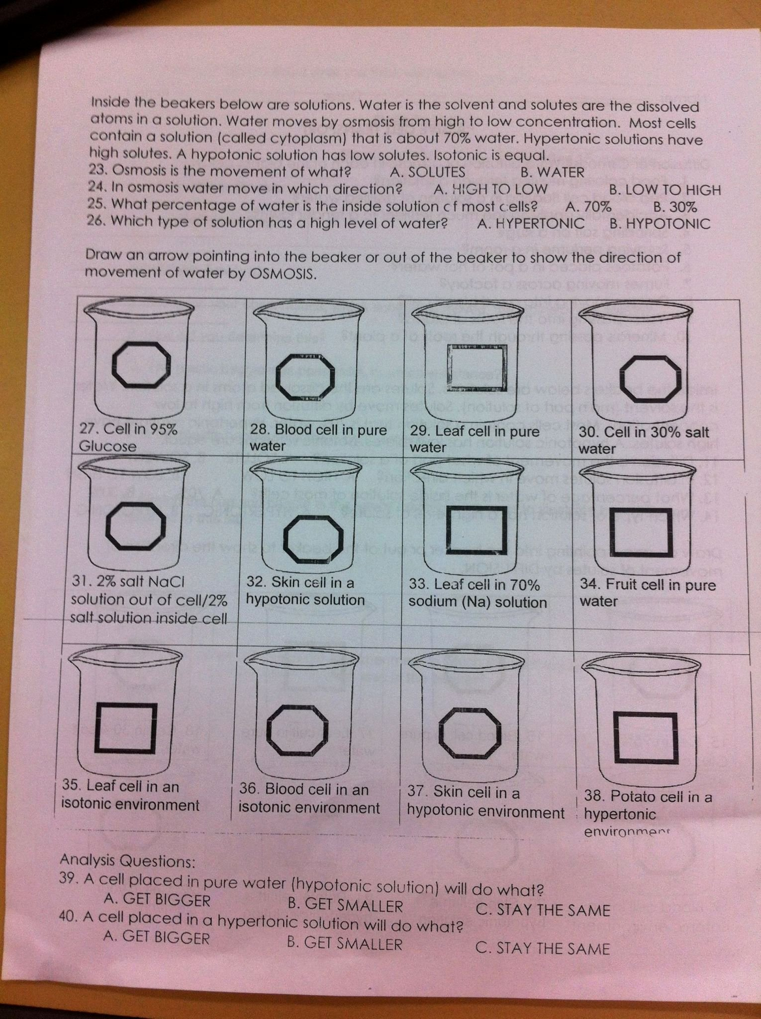 blood flow worksheet answer key