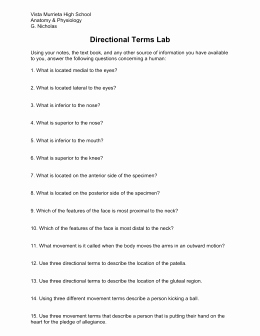 Anatomical Terms Worksheet Answers Luxury A&p – Chapter 1 – Directional Terms