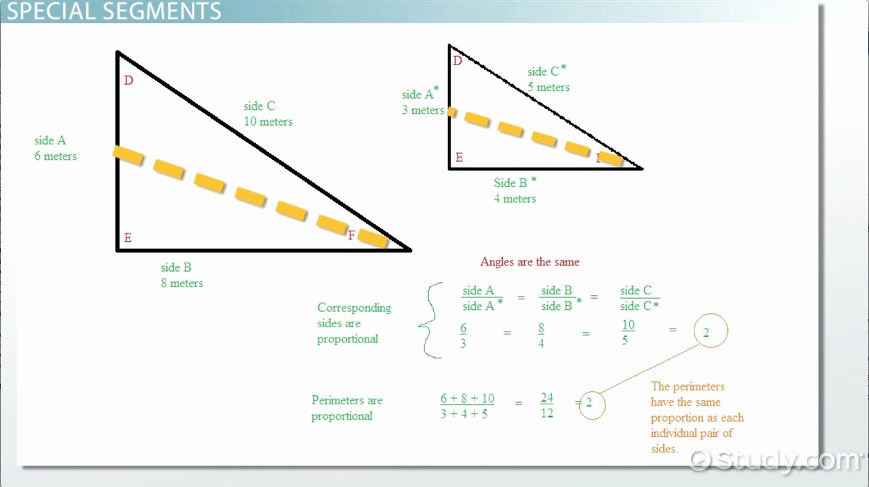 Angle Bisector theorem Worksheet Awesome Proportional Relationships In Triangles Video & Lesson