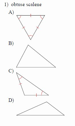 Angle Bisector theorem Worksheet Best Of Classifying Triangles Worksheets