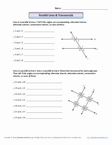 Angles and Parallel Lines Worksheet New Angle Worksheet Parallel Lines and Transversals