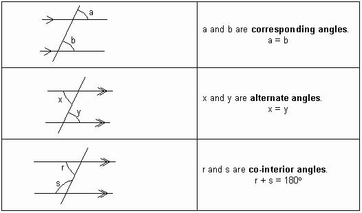 Angles and Parallel Lines Worksheet New Angles & Parallel Lines Geometry Tutorial