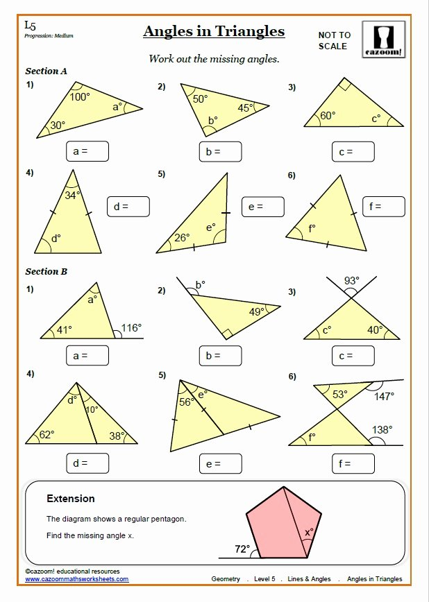 Angles In A Triangle Worksheet Beautiful Lines and Angles Worksheets