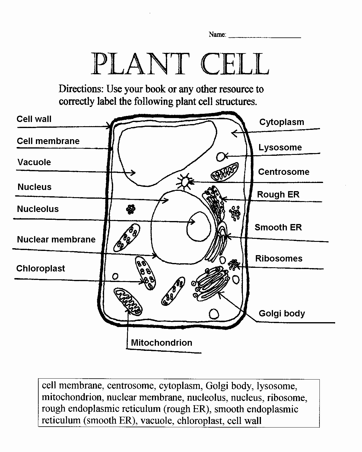 Animal and Plant Cells Worksheet Unique Plant Cell Parts Worksheet with Word Bank