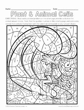 Animal Cells Coloring Worksheet Awesome Plant and Animal Cells Color by Number by Science Teaching