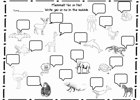 Animal Classification Worksheet Pdf Awesome 7 Best Of Reptile Worksheets for First Grade