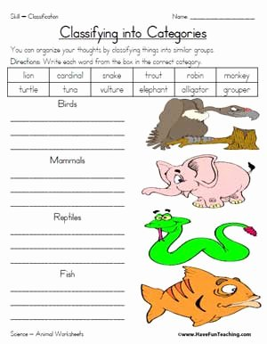 Animal Classification Worksheet Pdf Awesome Animal Classification