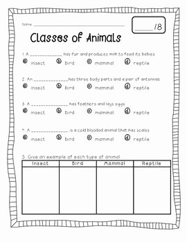 Animal Classification Worksheet Pdf Best Of Animal Classification Freebie
