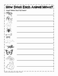 Animal Classification Worksheet Pdf Elegant Animal Classification Worksheets