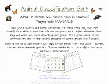 Animal Classification Sort 6 Different Groups