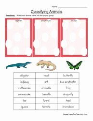 Animal Classification Worksheet Pdf Luxury Classifying Animals Worksheet Reptiles Amphibians or