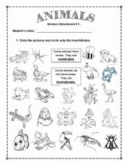 Animal Classification Worksheet Pdf New All these Worksheets and Activities for Teaching