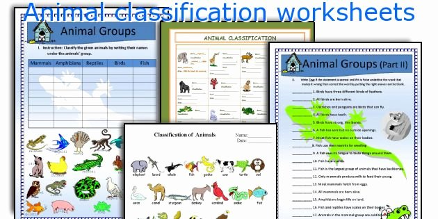 Animal Classification Worksheet Pdf New Animal Classification Worksheets