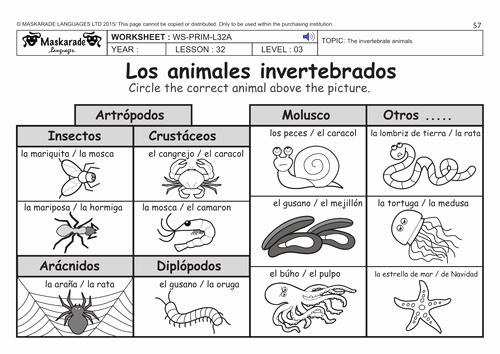 Animal Classification Worksheet Pdf New Spanish Ks2 Level 3 Ks3 Year 7 Vertebrate and