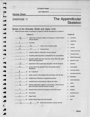 Appendicular Skeleton Worksheet Answers New Axial Skeleton Exercise Wwoows 53$w$ Student Name Lab
