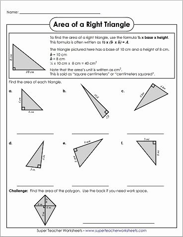 Area Of A Triangle Worksheet Best Of 78 Best Images About Math Super Teacher Worksheets On