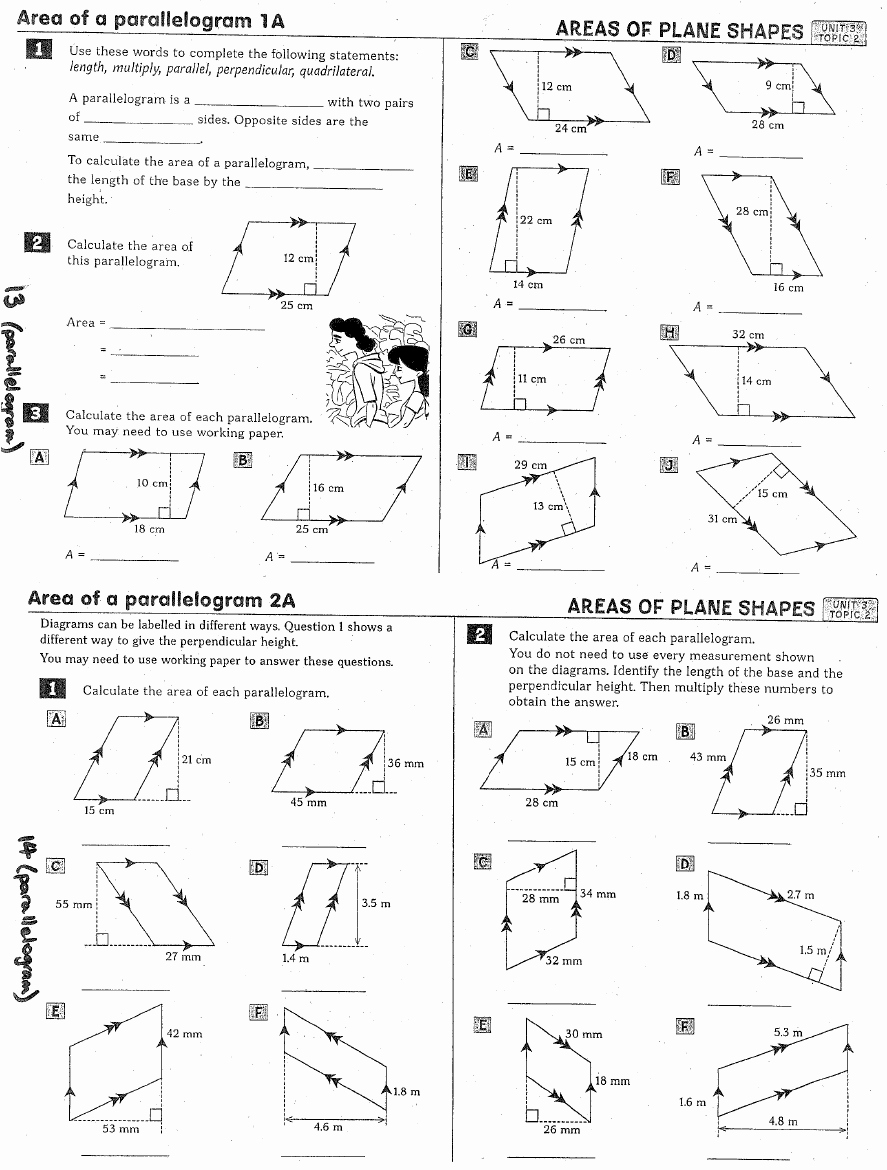 Area Of Rhombus Worksheet New 10 Best Of Worksheets area Kite Rhombus and