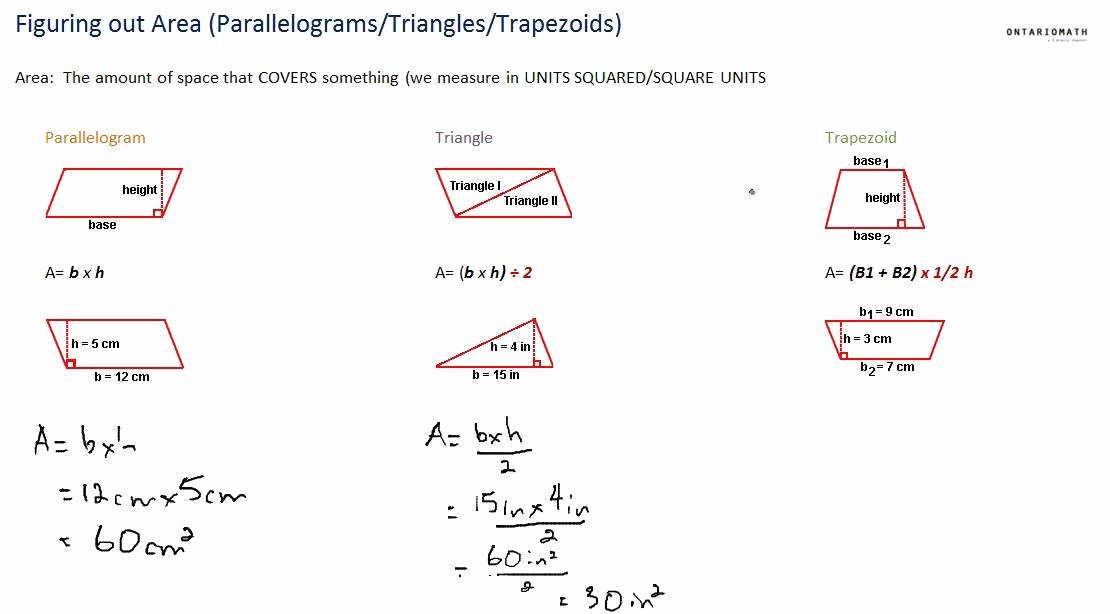 Area Of Rhombus Worksheet New area Parallelogram Worksheet