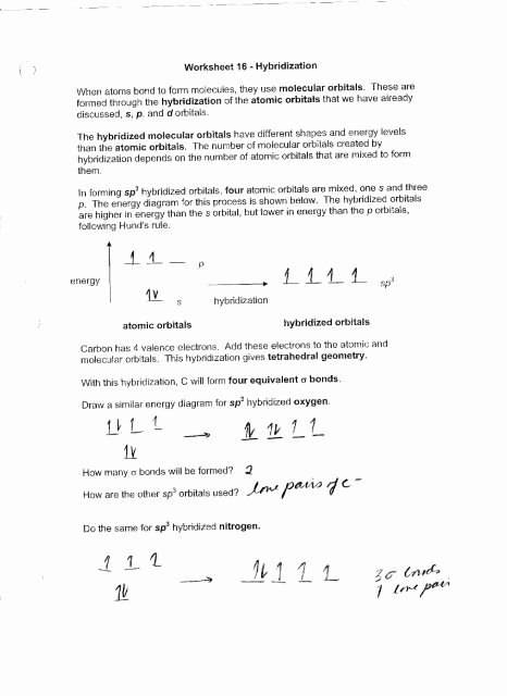 Atoms and Molecules Worksheet Elegant Worksheet 16 Hybridization when atoms Bond to form