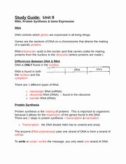 Atoms Vs.ions Worksheet Answers Beautiful atoms Vs Ions Worksheet Answer Key Name Date Period