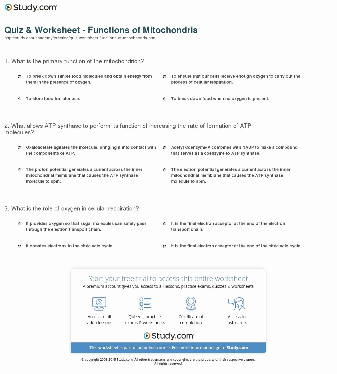 Atp Worksheet Answer Key Fresh Quiz & Worksheet Functions Of Mitochondria