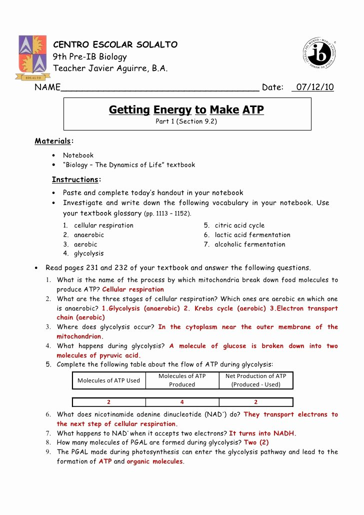 Atp Worksheet Answer Key Inspirational Getting Energy to Make atp Part 1 Pp 231 226 Answer Key