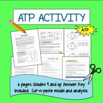 Atp Worksheet Answer Key New 1000 Images About the Biology Classroom On Pinterest
