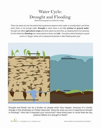 Before the Flood Worksheet Best Of Pinterest • the World's Catalog Of Ideas