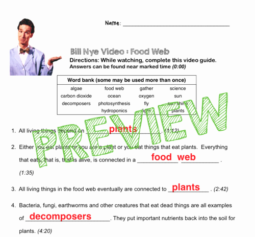 Bill Nye Biodiversity Worksheet Answers Unique Bill Nye Video Questions Food Web W Time Stamp Word