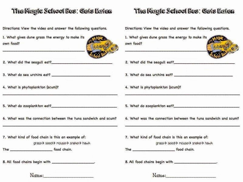 Bill Nye Energy Worksheet Lovely Bill Nye Energy Worksheet