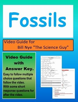 Bill Nye Fossils Worksheet Elegant Bill Nye S4e19 Fossils Video Follow Along with Answer Key