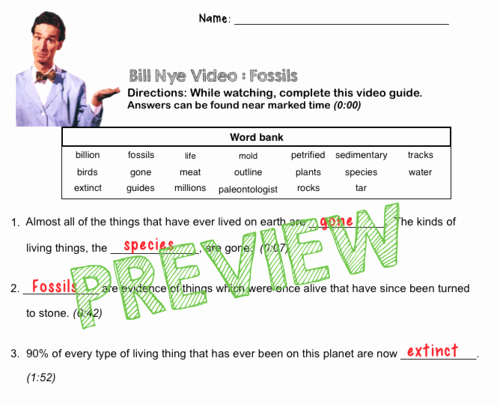 Bill Nye Fossils Worksheet Luxury Bill Nye Video Questions Fossils W Time Stamp Word