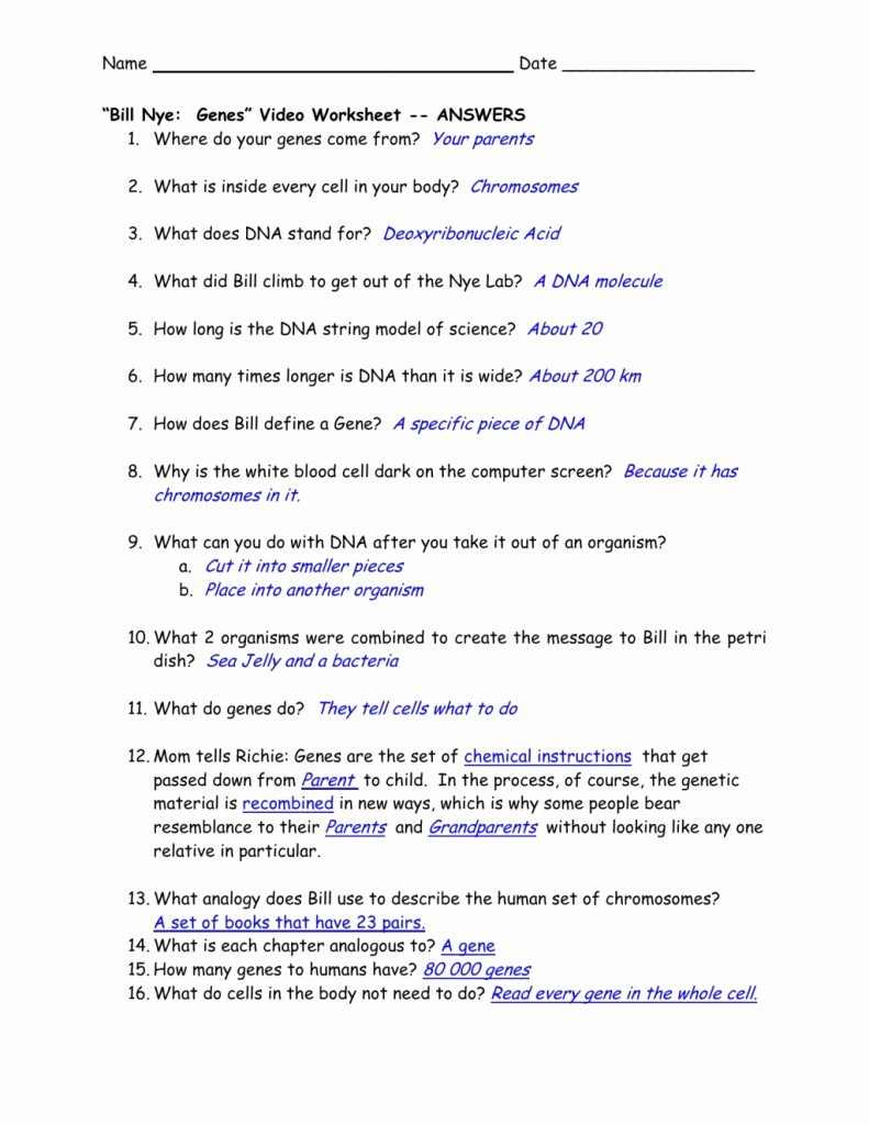 "Bill Nye Genes Worksheet Beautiful Modification Template Of Bill Nye Genes"" Video Worksheet"