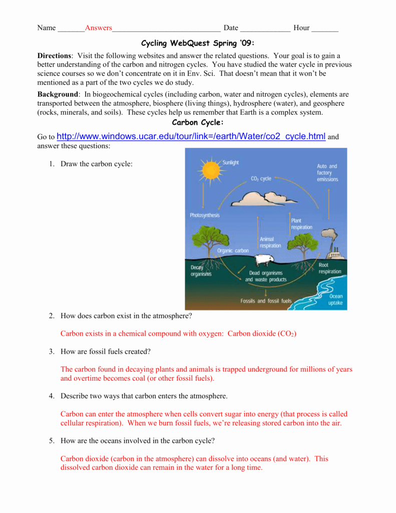 Biogeochemical Cycles Worksheet Answers Beautiful Biogeochemical Cycles Webquest Answer Key