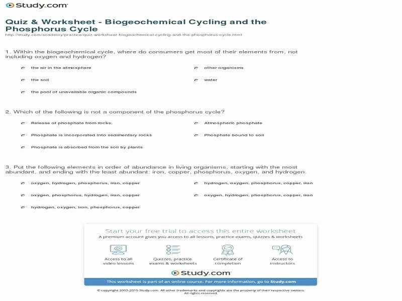 Biogeochemical Cycles Worksheet Answers Elegant Biogeochemical Cycles Worksheet