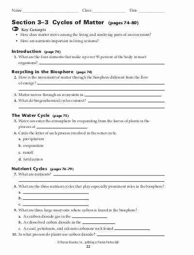 Biogeochemical Cycles Worksheet Answers Luxury Biogeochemical Cycles Worksheet