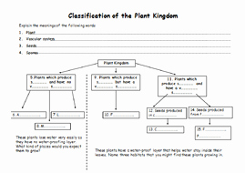 Biological Classification Worksheet Answer Key Awesome Classification Of Plants and Animals by Jballmate
