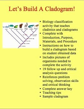 Biological Classification Worksheet Answer Key Elegant Cladogram Activity Build A Cladogram Classification