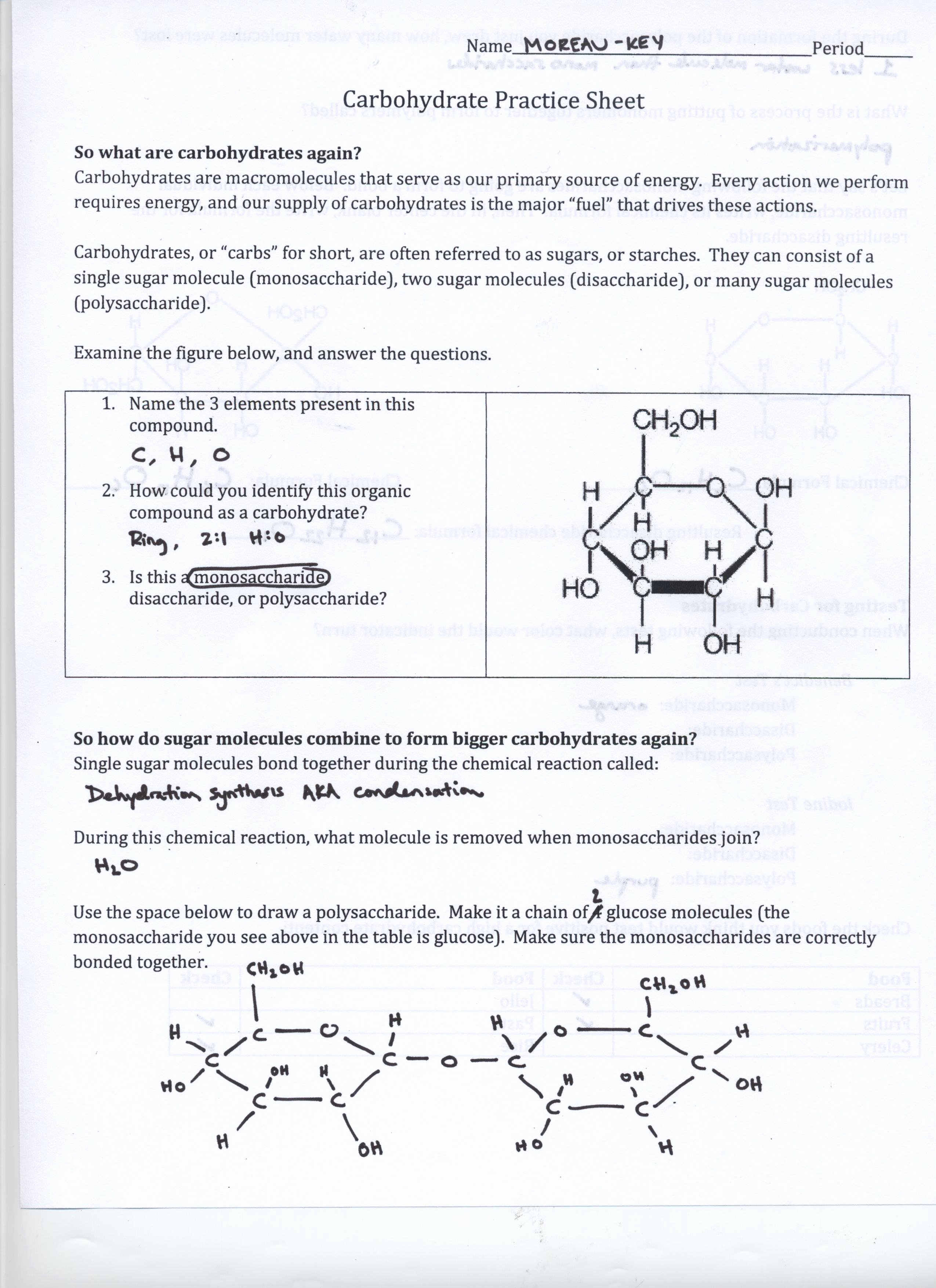 Biological Molecules Worksheet Answers Best Of 138 Class Materials Mr Moreau S Website