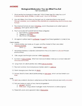 Biological Molecules Worksheet Answers Elegant Crashcourse Biology 3 Biological Molecules by Science
