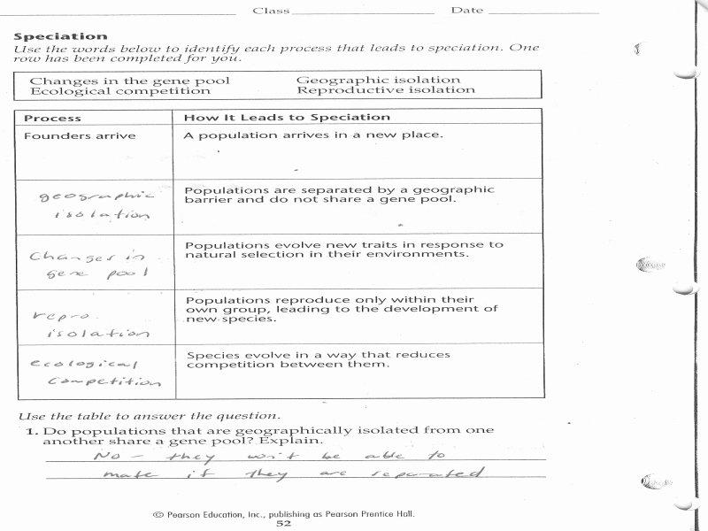 Biology Karyotype Worksheet Answers Key Inspirational Biology Karyotype Worksheet Answers Free Printable